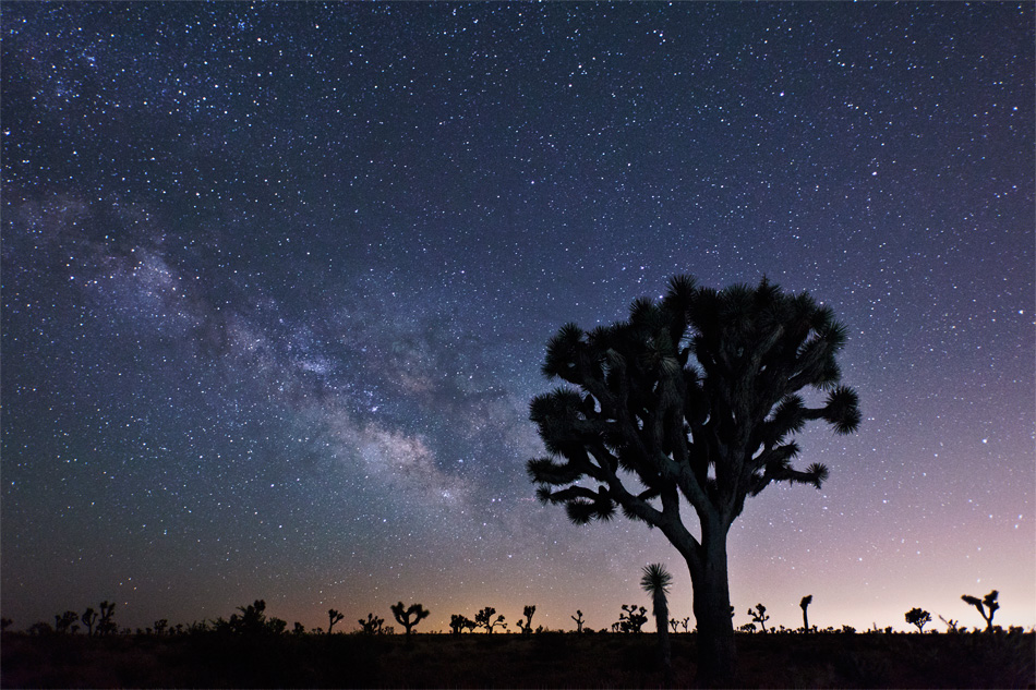 Meteor Shower and Timelapse Workshop in Joshua Tree