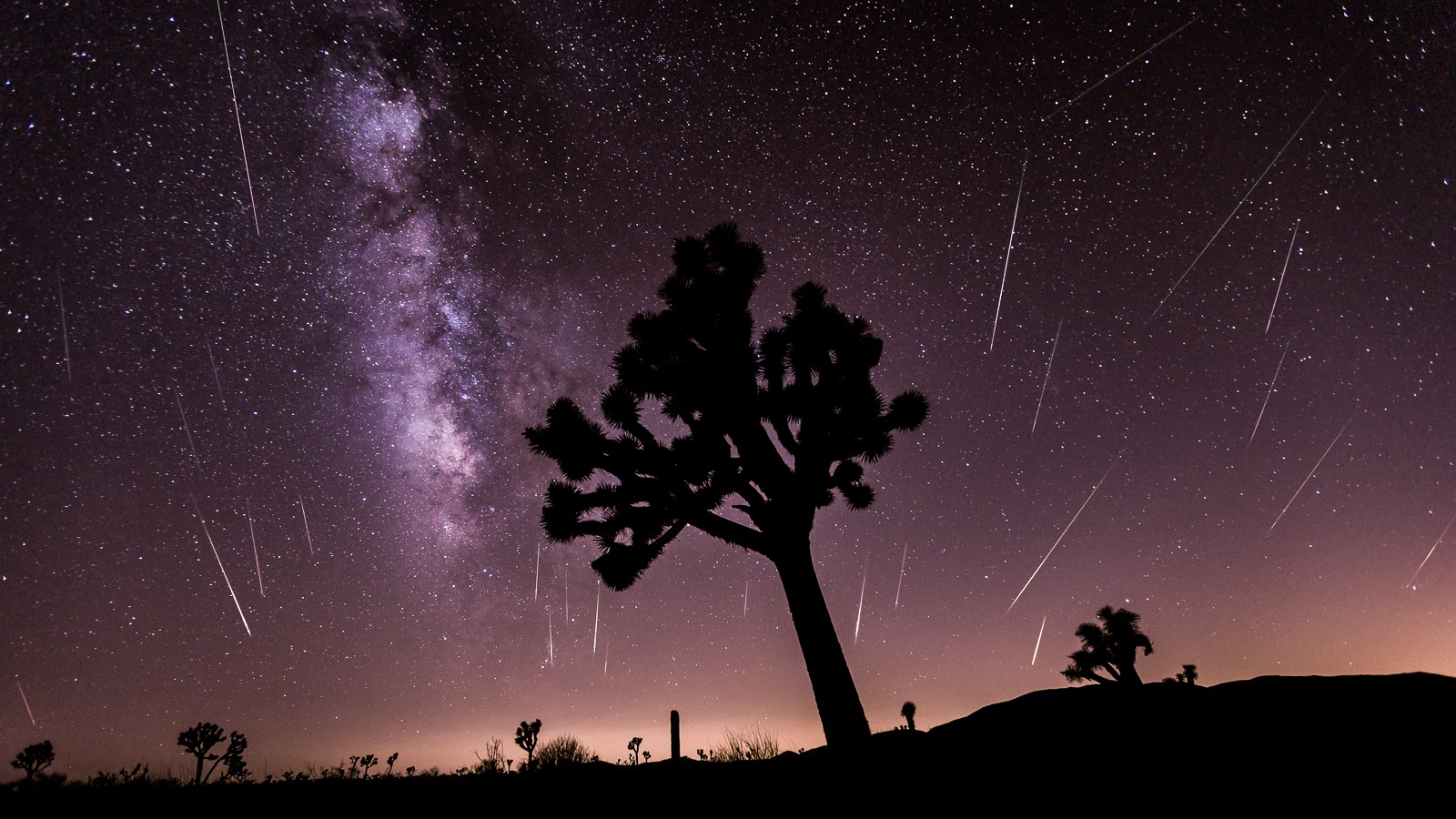 Three Days of Perseid Meteor Shower in 60 Seconds